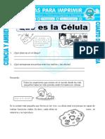 Ficha Que Es La Celula Para Cuarto de Primaria