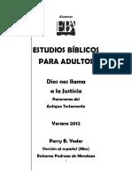 Estudios Biblicos para adultos