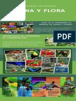 Infograma Planes Ambientales