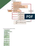Flujograma Procedimiento Examen Ocupacionales
