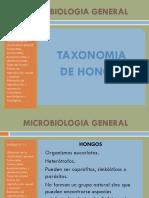 Taxonomia de Hongos