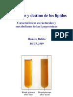 transporte de lipidos.pdf