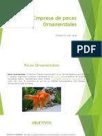 Empresa de Peces Ornamentales (1).Pptx16.PptxALEXIA.pptx25
