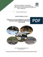 ROSELI_PEREIRA_NUNES.pdf