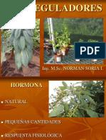 BIORREGULADORES PREGRADO 2015.ppt