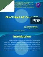Fractura de Falange