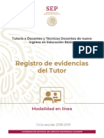 Registro de Evidencias Tutor 2019