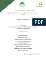 proyecto desarrollo 5 semestre II.docx