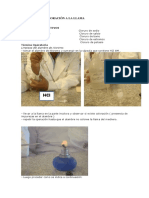 219951427-Informe-de-Practica-1.docx