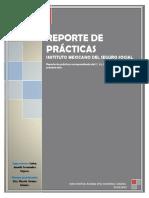 REPORTE DE PRÁCTICAS.docx