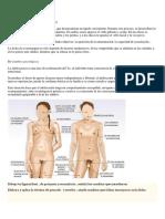 F.A 2D0 PFRH.docx