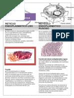 folletos2.docx