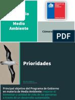Presentación Marcela Cubillos Ante Comisión de Medio Ambiente y Recursos Naturales