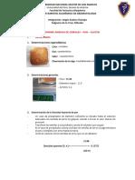 INFORME DE CEREALES- MIERCOLES.docx