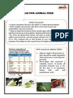 Algae for Animal Feed