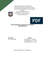 TRABAJO DE HIDROLOGIA CUENCAS HIDROGRAFICAS.docx