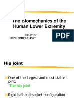Lower Extremity Biomechanics 2018 Part 1