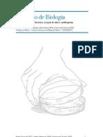 Relatório de Biologia sobre Antibiograma