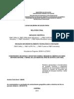 Relatório IC - Lucas Salmoria de Souza Rosa
