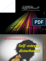 MHN Presentation