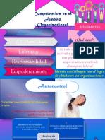 Competencias en el Ámbito Organizacional. Escuela de Psicologia U.B.A