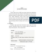 LP CKD VV.docx
