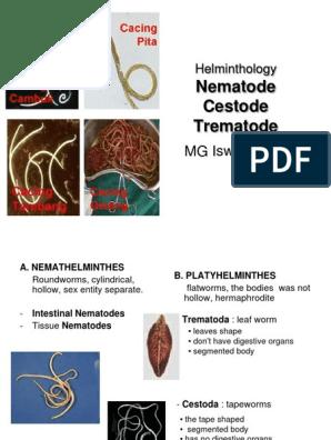trichinella hermaphrodit gyógyszerek férgek számára, széles hatástartamú gyermekek számára