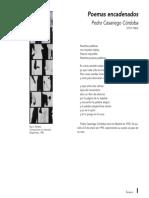 Poemas encadenados, extracto.pdf