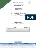 Dail Feto WDS 260319.pptx