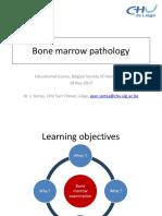 Bone Marrow Pathology 2.pdf