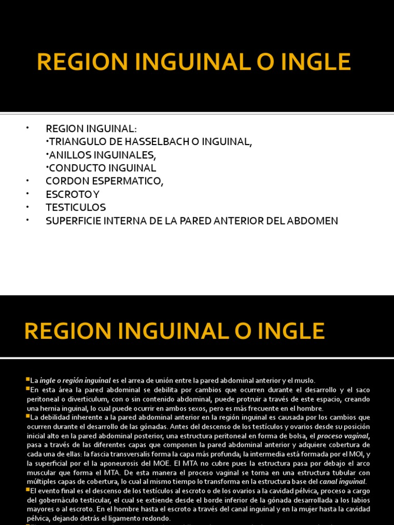 3.2 Subtema Canal Inguinal y Peritoneo