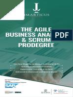 The Agile Business Analysis Scrum EBrochure 1