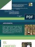 Diapositiva del caucho corregida.pptx