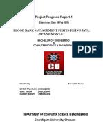 First Progress Report.doc