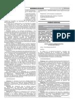 Res.Adm.070-2019-CE-PJ