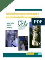 3 Barbara Ruffoni production métabolites in vitro CEDDEM 2015.pdf