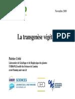 La Transgenese Vegetale