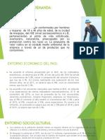 ANALISIS DE LA DEMANDA.pptx