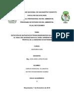 DETECCIÓN DE Batrachochytrium dendrobatidis EN ANFIBIOS DESDE EL SUELO DEL BOSQUE HASTA EL DOSEL SUPERIOR DE UNA SELVA TROPICAL DE LA AMAZONÍA ECUATORIANA.docx