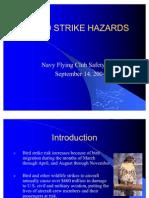 Bird Strike Hazards Sep 04