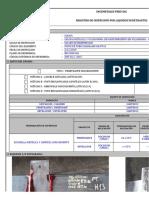 Registro de Liquidos Penetrantes - MK-PT-01 POSTE-E