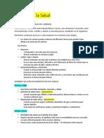 Química en la Salud-yop.docx