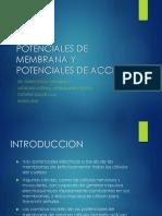 1. Introduccion a La Fisiologia, Fisiologia Humana y Celular