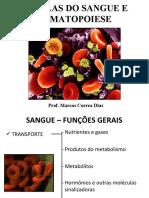MCD-Celulas Do Sangue e Hematopoese MED2009 Arquivo