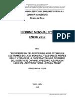3.-INFORME MENSUAL ENERO 2019 - MEMORIA.doc