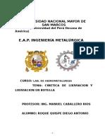 roque lixiviacion cinetica.doc