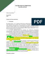 FUNÇÕES DOS NUTRIENTES.docx