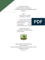 Laporan_praktikum_taksonomi_hewan_verteb.docx
