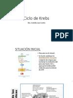 Ciclo de Krebs-CLASE 2019.pptx