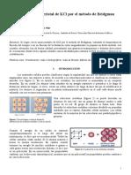 Crecimiento de cristales.pdf